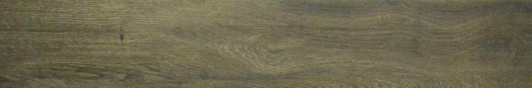 century-wood-dune
